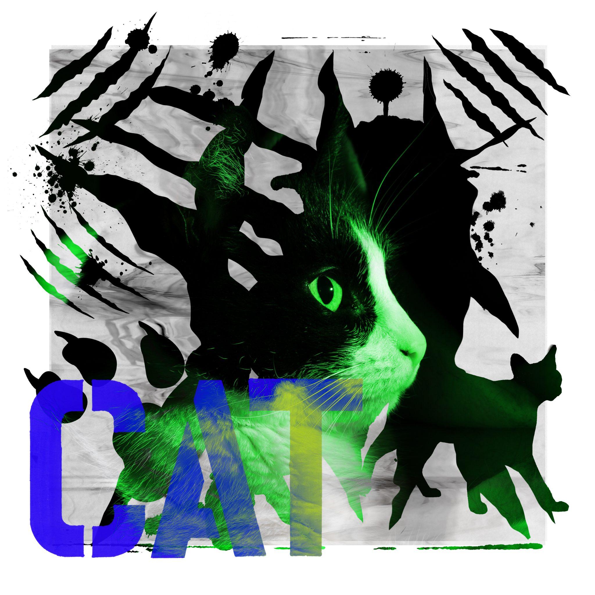 Bertus de Leeuw - Cat